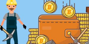 increase-bitcoin-income-in-2021